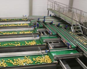 Plantransportörer i rosfritt utförande
